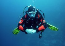 Scuba Diving – A Hobby for the Whole Family